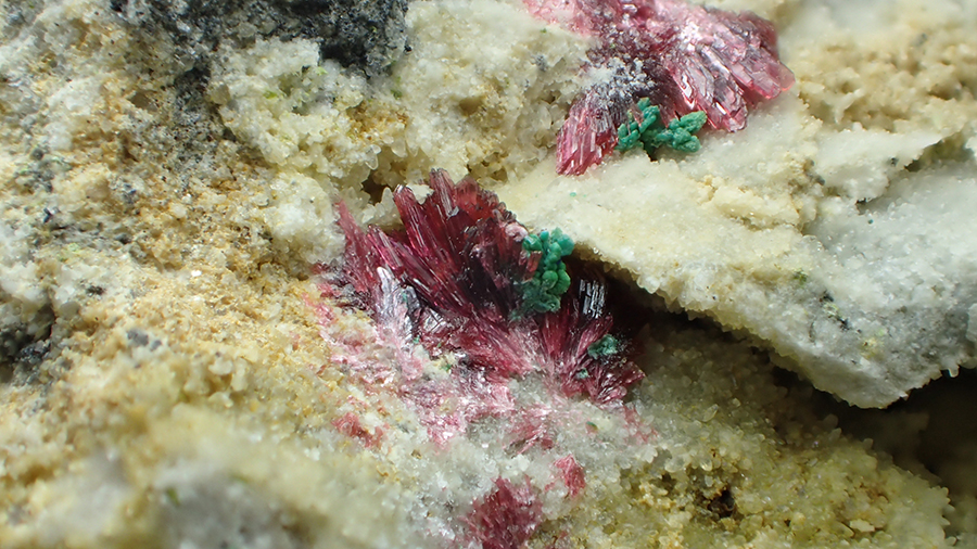 Copper Azurite Erythrite & Malachite