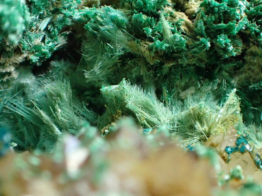 Brochantite & Spangolite