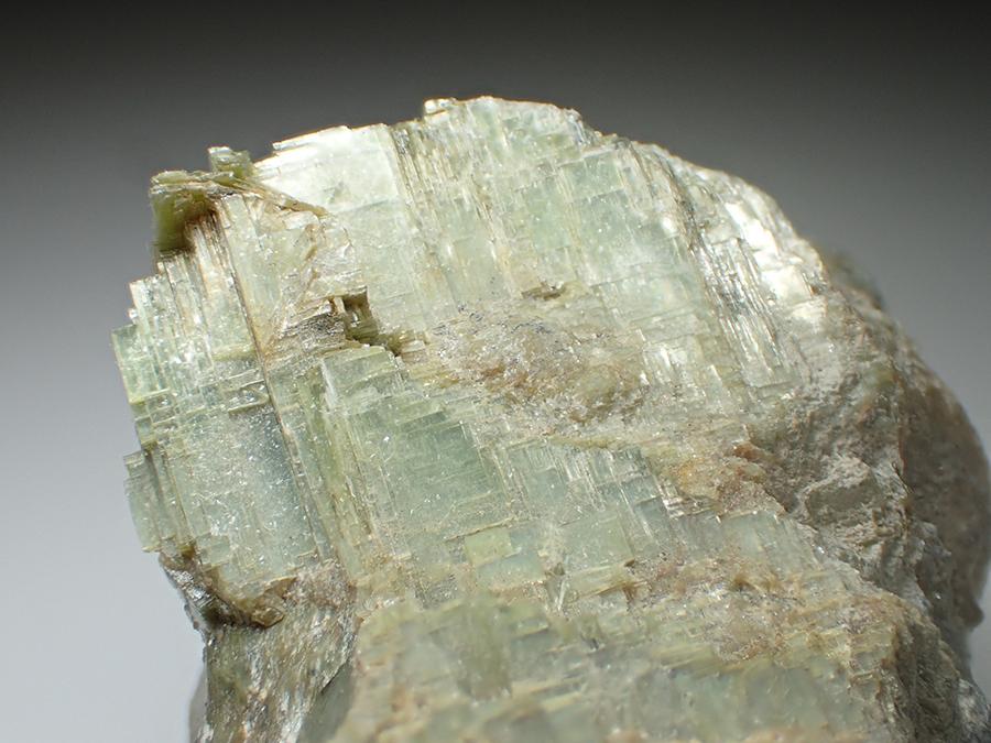 Serpentine Psm Forsterite