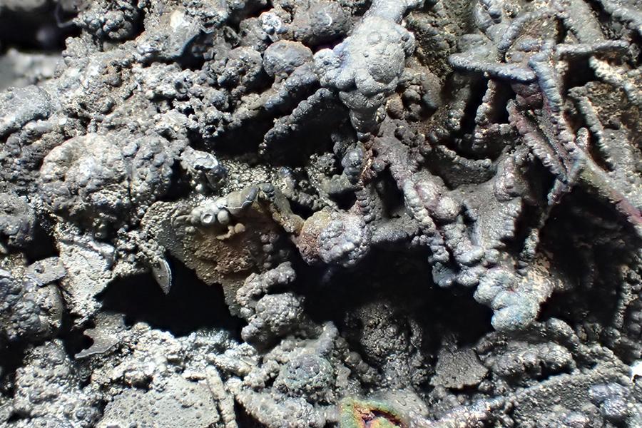 Coronadite Psm Wulfenite