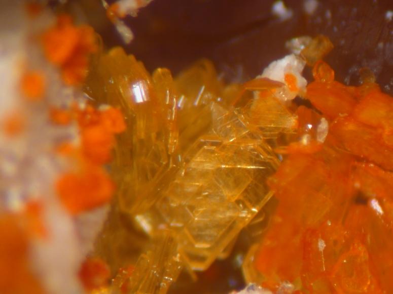 Goldichite Copiapite & Coquimbite