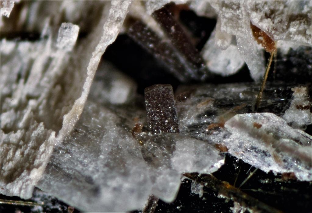 Genthelvite Catapleiite Albite Polylithionite Kupletskite Rhabdophane Amphibole & Aegirine