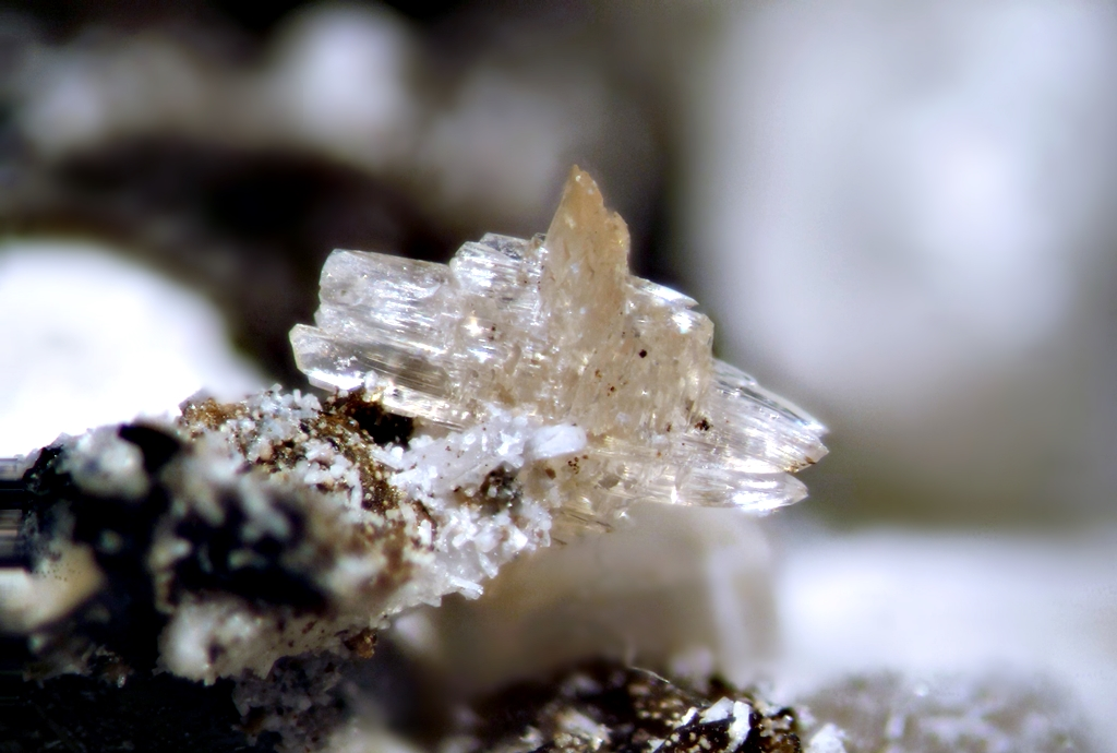 Behoite Gonnardite Sérandite Polylithionite & Analcime
