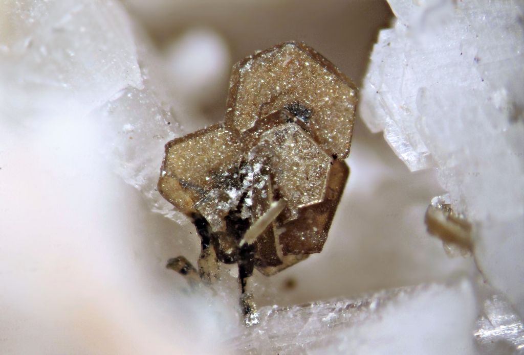 Synchysite-(Ce) Rutile & Nenadkevichite