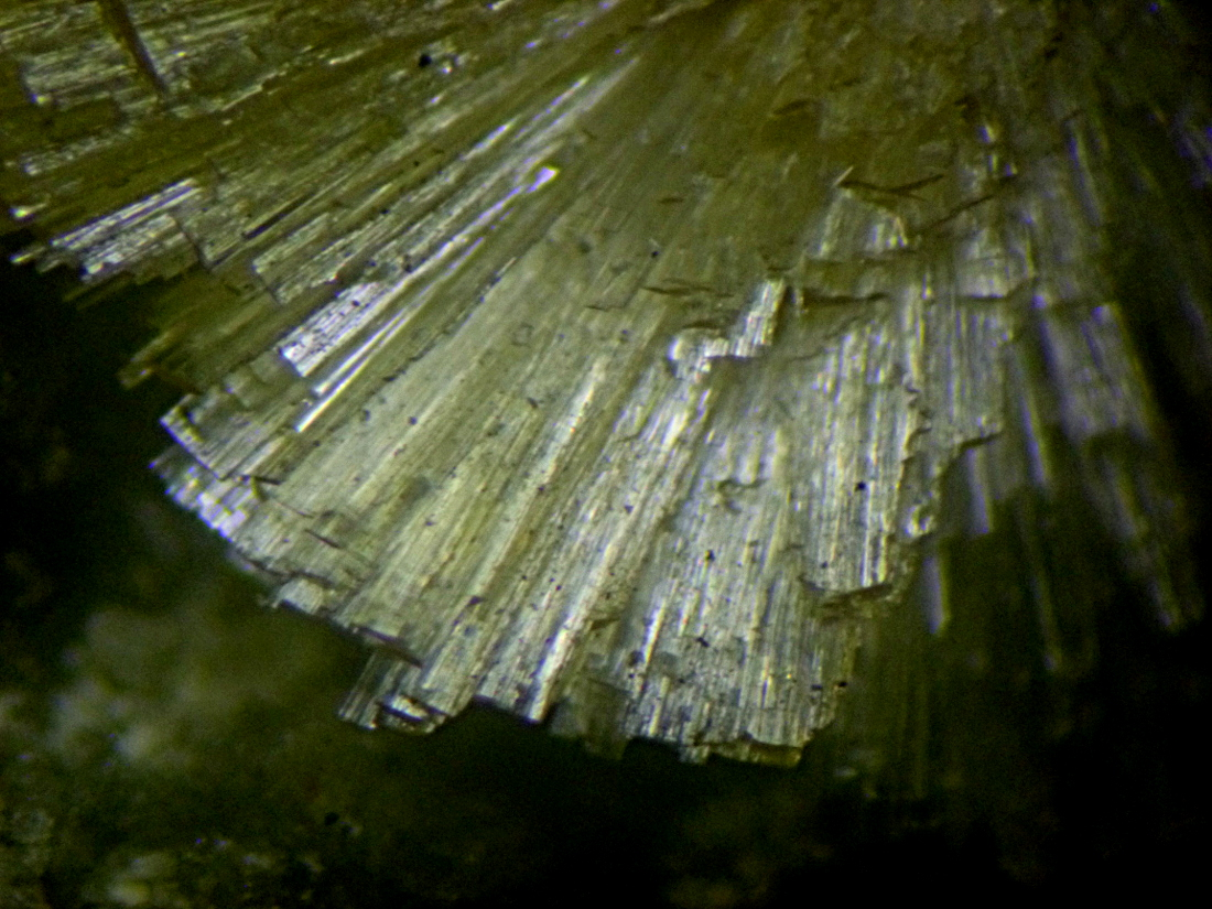 Dickthomssenite