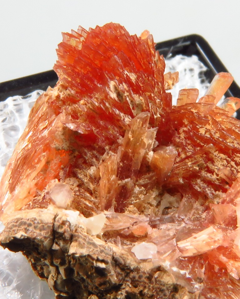 Inesite & Orlymanite