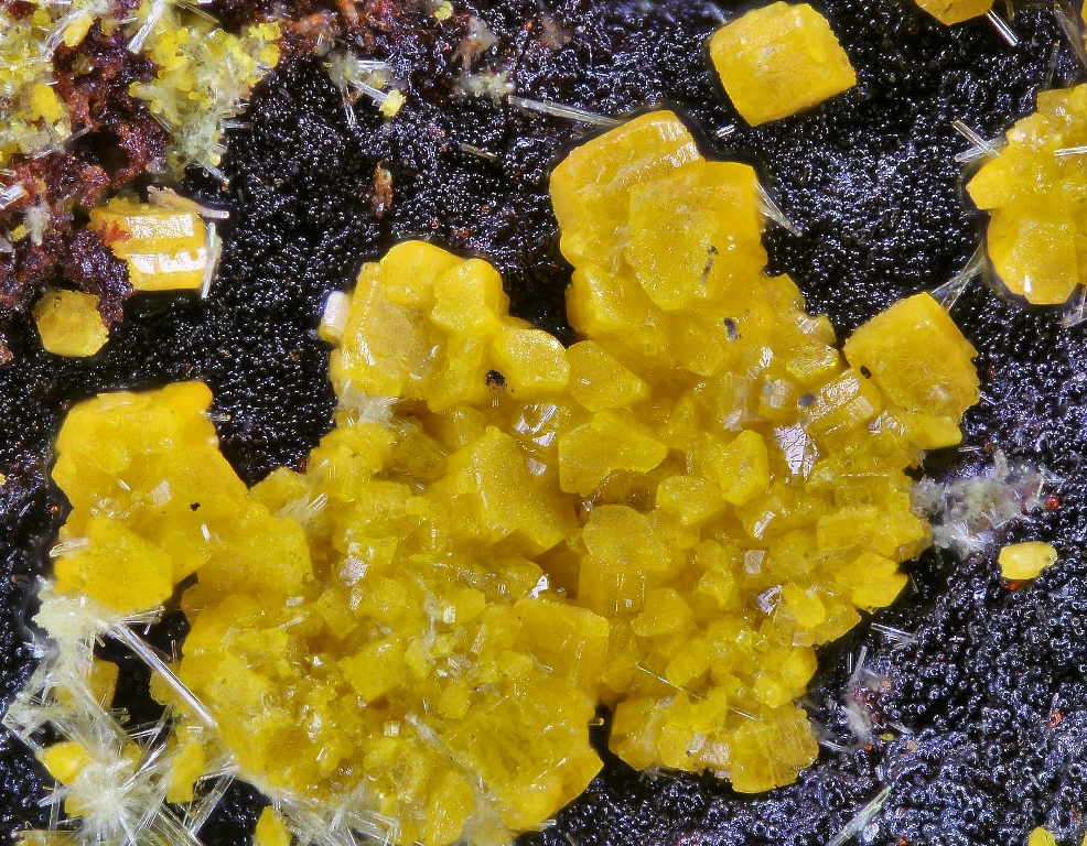 Billietite & Uranophane