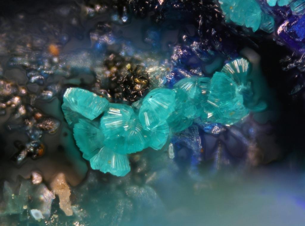 Tangdanite & Azurite