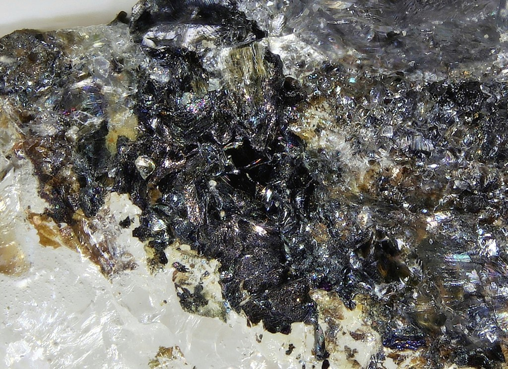 Thalcusite