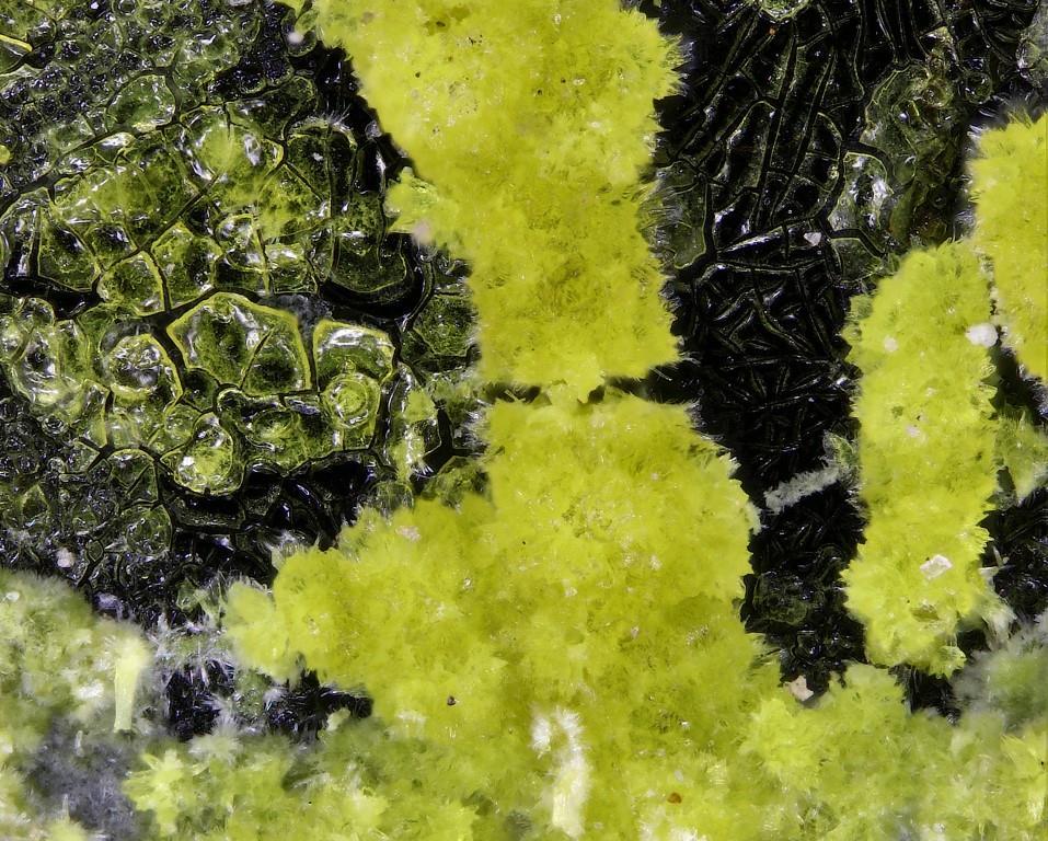 Paddlewheelite Blatonite & Compreignacite