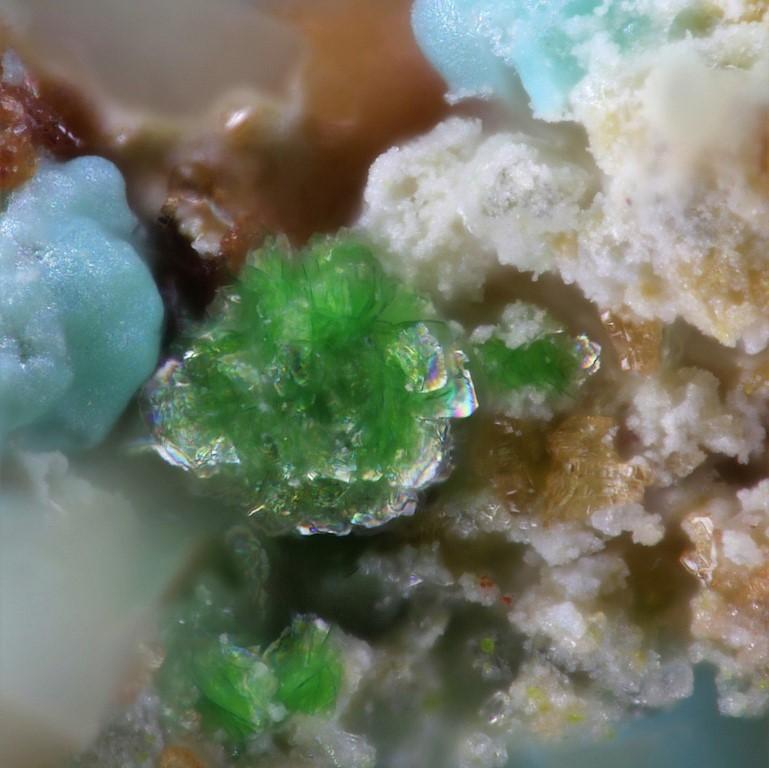 Bairdite Timroseite Fuettererite & Burckhardtite