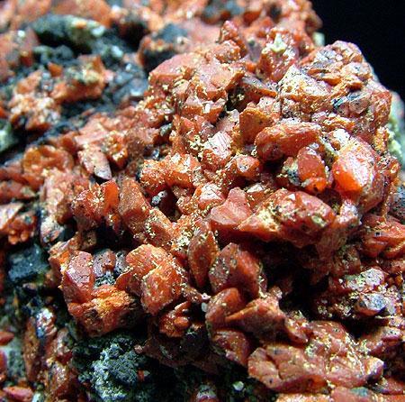 Crocoite With Vauquelinite & Coronadite