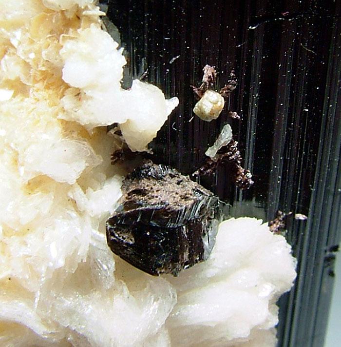 Schorl Quartz Cassiterite Topaz & Tantalite