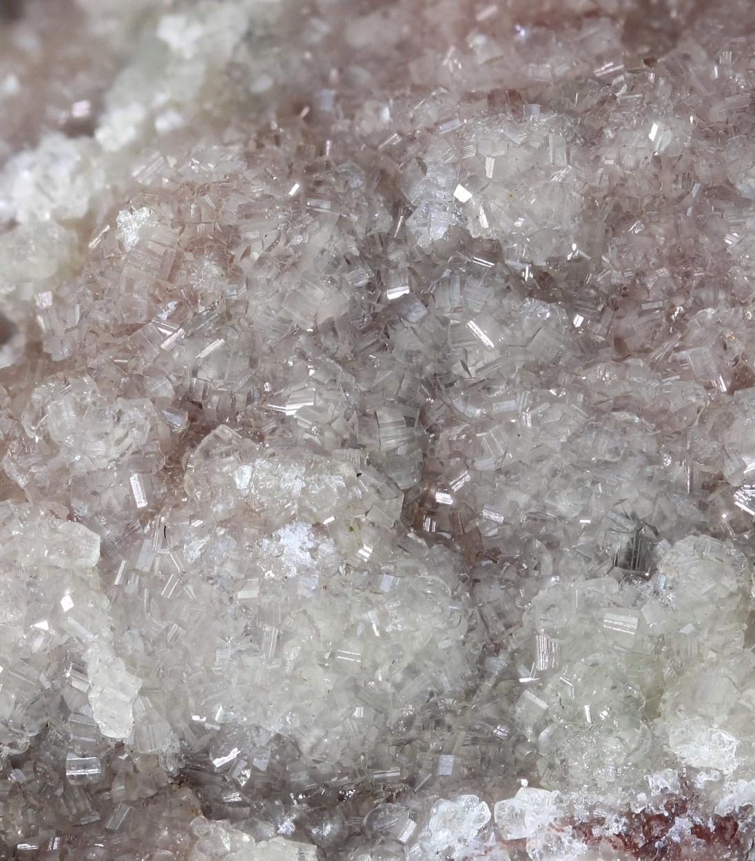Carbonate-rich Fluorapatite