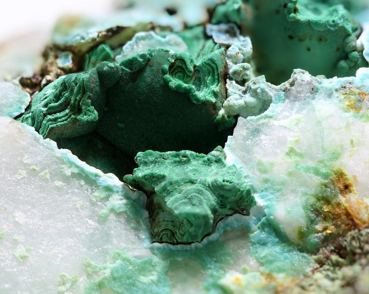Malachite With Chrysocolla