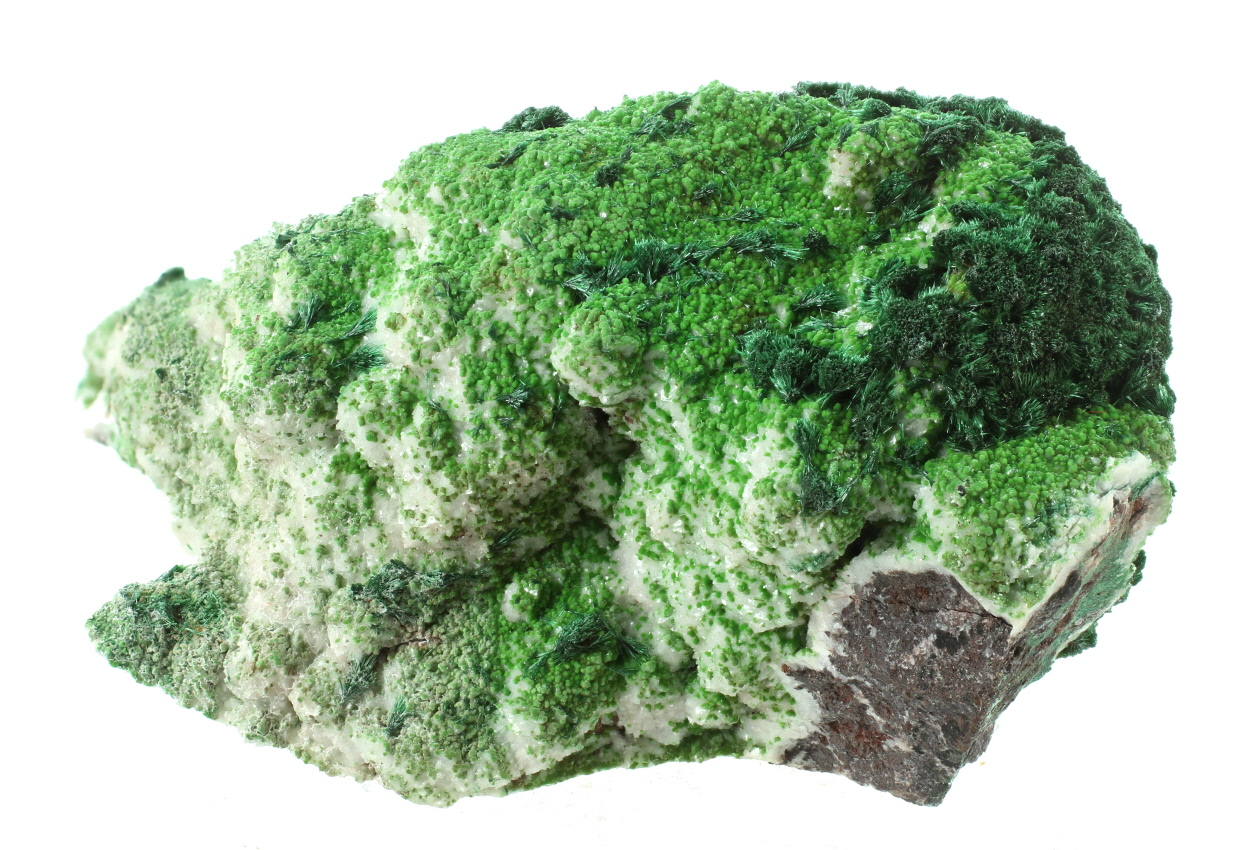 Conichalcite & Malachite