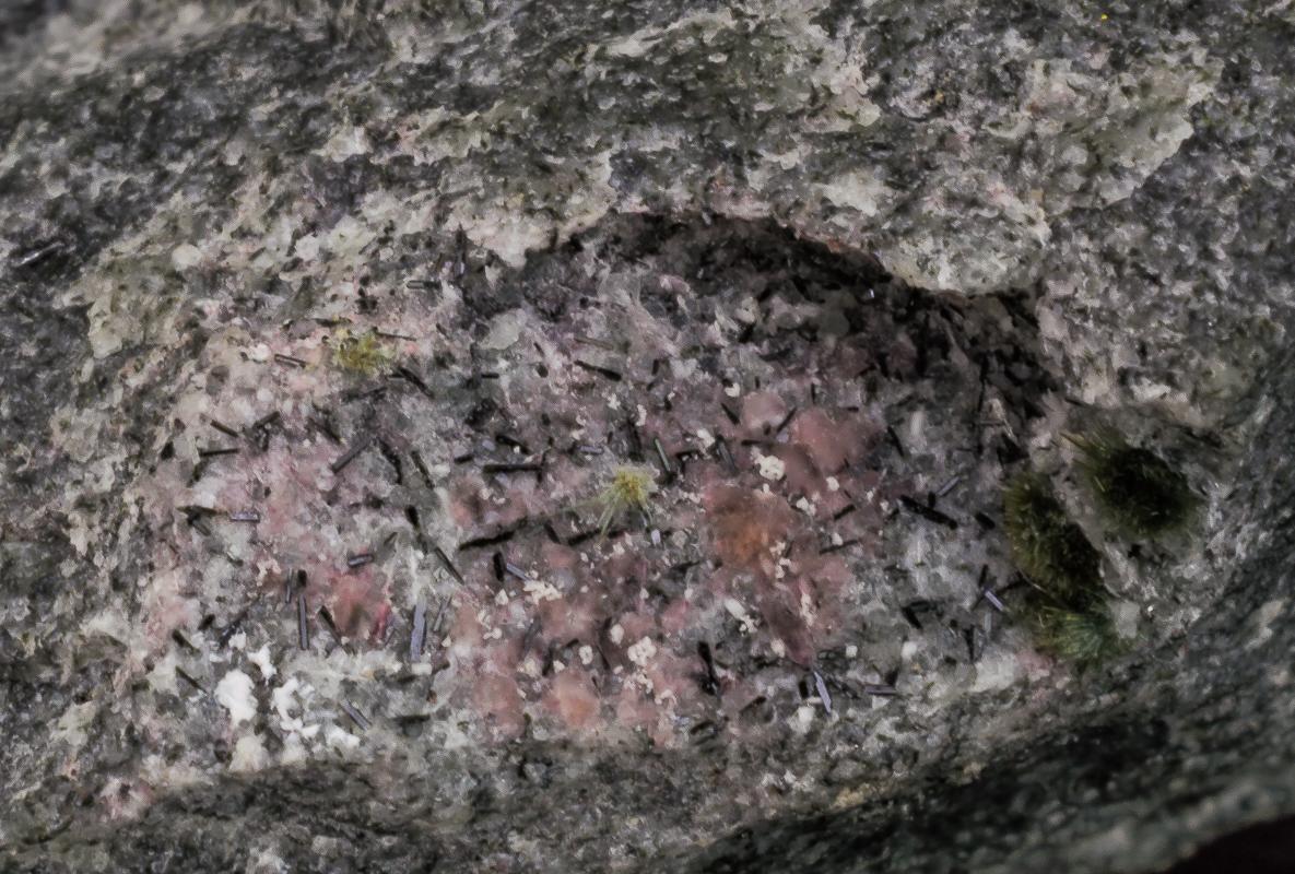 Galena Fluorapatite Villiaumite Tuperssuatsiaite Aegirine & Fluorite