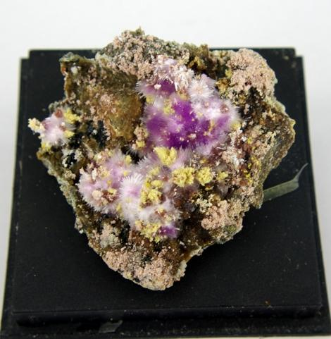Kornelite Copiapite Voltaite & Szomolnokite