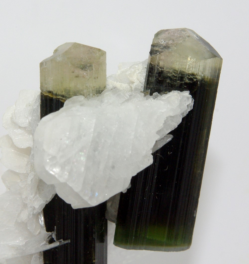 Elbaite Tourmaline In Albite