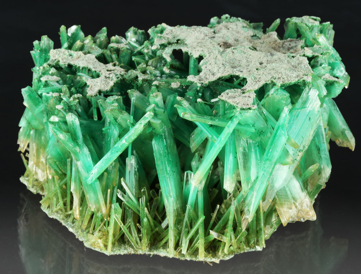 Gypsum Var Selenite With Atacamite & Herbertsmithite