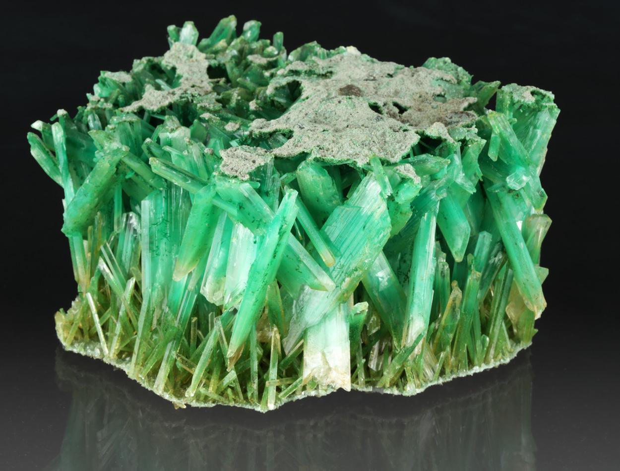 Gypsum Var Selenite With Atacamite & Herbertsmithite