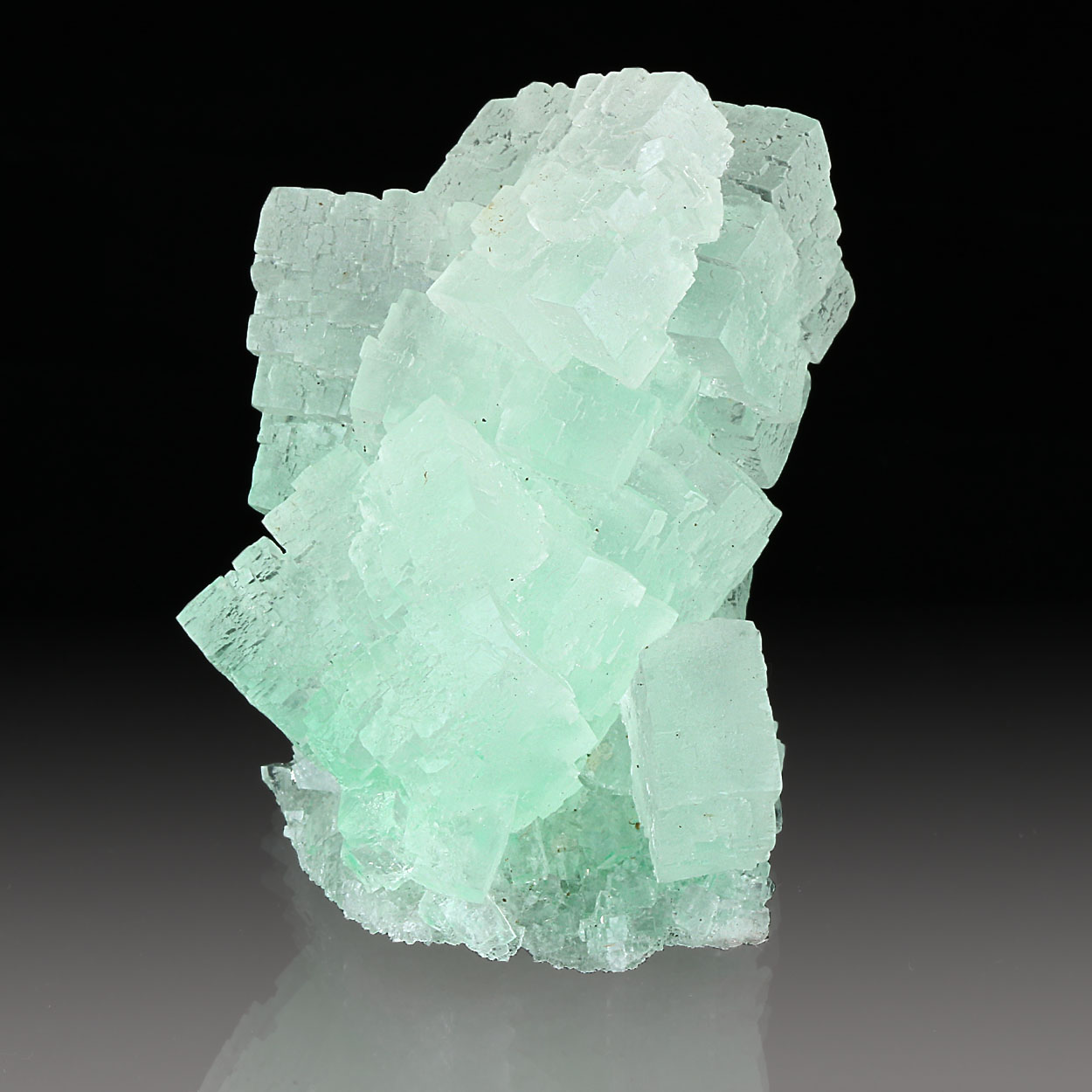 Halite With Herbertsmithite & Atacamite