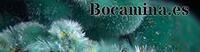 Bocamina.es