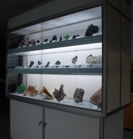 Collection/Collection Displays: Warren Taylor Collection