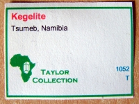 Main Collection Label Style