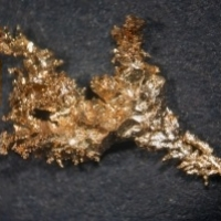 Album: Palladium Nuggets; Natural & Artificial