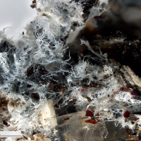 Photos: Tavagnascoite from Bolivia - a significant new find!