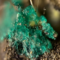 Photos: Paddlewheelite & Albrechtschraufite - New Discovery!