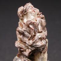 Manganoneptunite & Natrolite