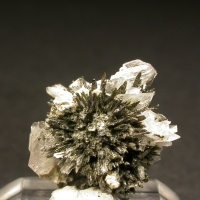 Pectolite & Fluorapophyllite-(K) & Aegirine