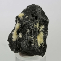 Pristine Minerals: 14 Nov - 21 Nov 2019