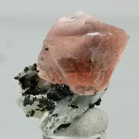 Pristine Minerals: 05 Dec - 12 Dec 2019