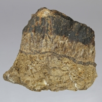 Collinsite & Quercyite