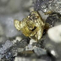 Gold Pyrite & Quartz