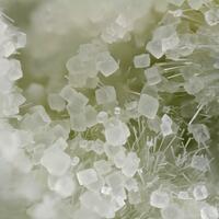 Calcite & Natrolite