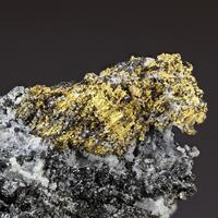 Gold Nagyágite & Magnetite