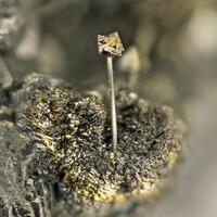 Millerite & Pyrite