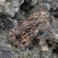 Norbert Stoetzel Minerals: 16 Apr - 23 Apr 2019