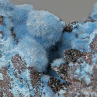 Norbert Stoetzel Minerals: 11 Feb - 18 Feb 2020
