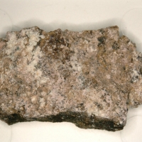 Ammoniotinsleyite