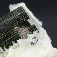 Tourmaline With Cleavelandite & Tantalite