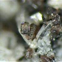 Pyroxferroite