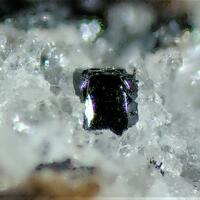 Kentrolite