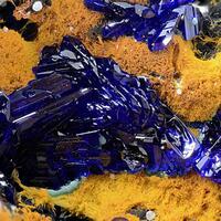 Azurite & Conichalcite