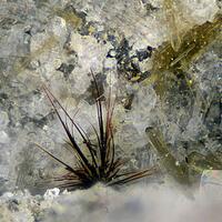 Warwickite Enstatite Phlogopite & Armalcolite