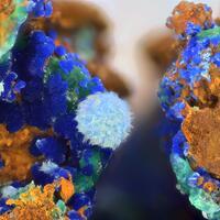 Cyanotrichite & Azurite